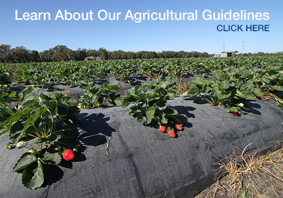 Agricultural guidelines - Click Here