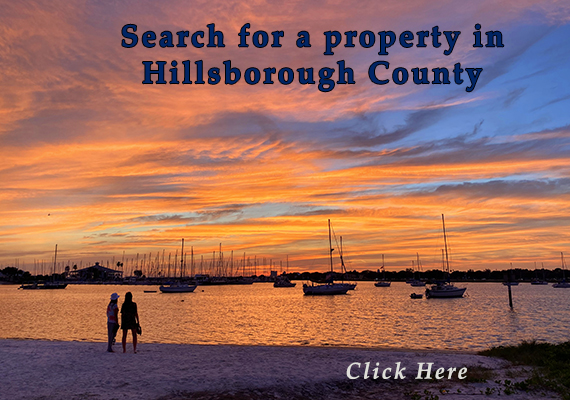 Perform property search
